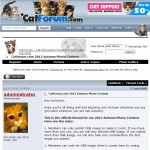 cat forum screenshot